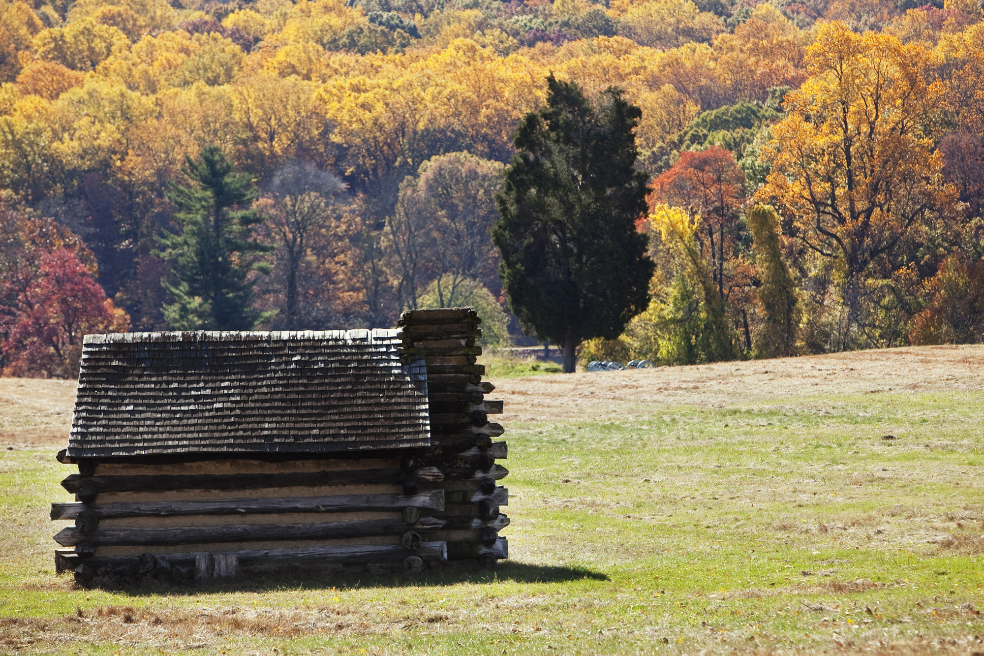 unplug with these ten fall foliage frolics in valley forge