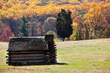 Unplug with These Ten Fall Foliage Frolics in Valley Forge and...