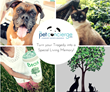 The Pet Concierge's Campaign to Support Pet Owners Is a Huge Success