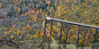 Fall Color Reaches Peak during Early October in the Allegheny National...