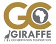 Giraffe Conservation Foundation (GCF)