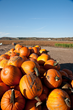 Missouri Fall Festivities on the Farm