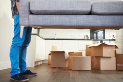 moving company bellevue