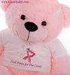 Big pink teddy bear, breast cancer awareness, Komen, Breast Cancer Can Stick It