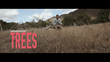 Promotional photography for The Trees Kickstarter film