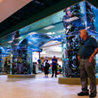 Aquarium Designer Reynolds Polymer Technology Manufactures 16,000...