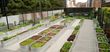 Jonathan Club rooftop garden