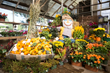 City Floral Garden Center | Garden Services & Greenhouse Denver, CO