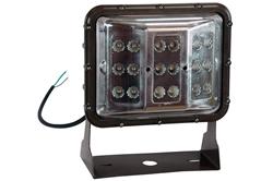 60 Watt LED Flood Light with Optional Color Output