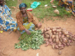 Support World Food Day by Supporting Family Farming Programs- Food for...