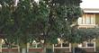 IFlyBusiness Coporate Office, San Bruno CA