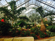 The Marjorie K. Daugherty Conservatory Opens Saturday, October 11 at...