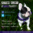 New Campaign Highlights Tie Between Pet and Domestic Abuse