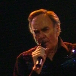 Neil Diamond Concerts