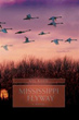 Author Nel Rand remarkets 2007 book 'Mississippi Flyway'