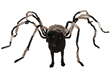 Spider Dog Pet Costume
