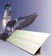Bird B Gone® Bird Slope™ Panels Awarded Several Patents for...