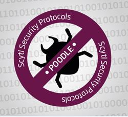 Scytl online voting secure against poodle bug