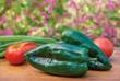 Burpee's 'Big Boss Man' Hot Pepper