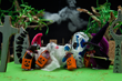 "Squirrel King Turns Kid's Craft Kits into ""A Halloween Treat"" with..."