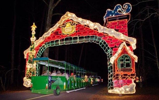 Discounted Christmas Lights