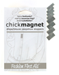 Prevent Fashion Disaster with Chick Magnet by Fashion First Aid