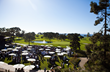Beer Garden at The Lodge at Torrey Pines - photo by Kevin Kemp
