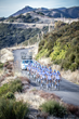 Team Novo Nordisk to Return for Third Season