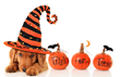 In Honor of Halloween, Dr. Sanjay Jain Offers Information about...