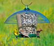 K-Feeders® wild bird feeder