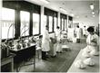DuPont Nutrition & Health R&D Lab at Braband, Denmark, Historic