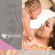 Over 800 New Surrogate Mother Members  at FindSurrogateMother.com...
