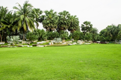 lawn care services | quotes for landscaping