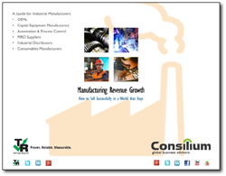 manufacturing revenue growth for b2b industrial companies