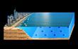 Ocean Turbine Farm