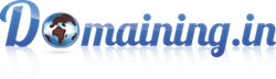 Domaining Logo