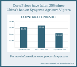 Syngenta Viptera Agrisure GMO Corn China Lawyers Infographic