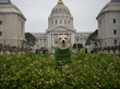 Frida – Dog Mayor of San Francisco November 18th, 2014