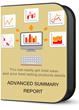 Advanced Summary Report