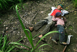 Coca-Cola, Human Rights Watch, child labor, human rights violations, child abuse,