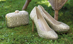 Sparkly Evening Party Shoes