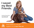 "Courtney Thorne-Smith, Star of ""Two and a Half Men"" Believes..."