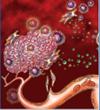 Anti-Angiogenesis and Immune Therapies