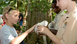 Audubon Nature Institute Launches New Education Programs
