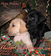 """""""The Holidays are Always Brighter with a Warm Puppy in Your Lap!"""""""