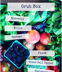 Grub Box of  Organic Seasonal Fruits and Veggies