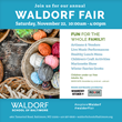 Waldorf Fair 2014