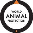 World Animal Protection campaigns to save Amazon dolphins from...