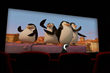 Newport Aquarium Penguins to Walk the Red Carpet at Newport on the...
