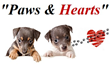 Paws and Hearts Walk Inspires Home Sales